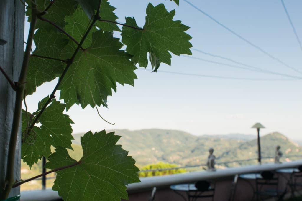 ristorante panoramico a montecatini